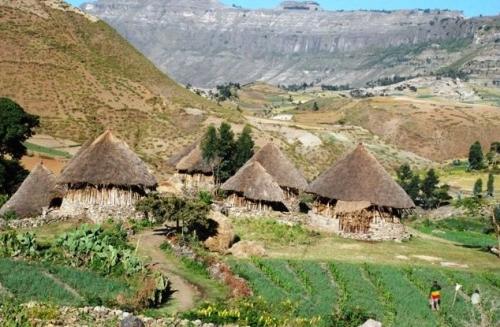 africanera08.jpg
