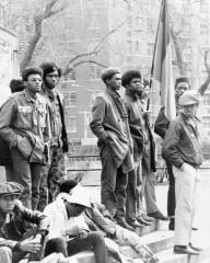 Un raduno di Pantere Nere a New York