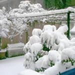 Pergolato con la neve